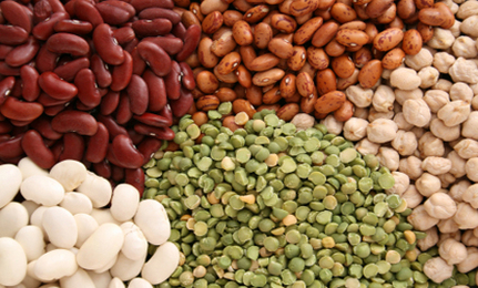 plant based protein beans