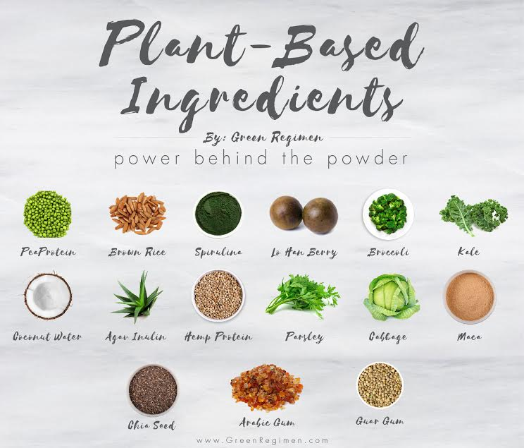 The Ingredients of the Best Protein Supplement